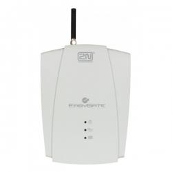 Аналоговый GSM шлюз 2N EasyGate Fax