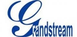 Купольная антивандальная IP камера Grandstream GXV-3662